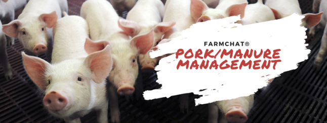 Pork farmchat promotion